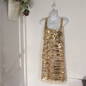 Gold Sequence Evening Dress (wild cat)